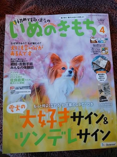2017年4月号いぬのきもち4.jpg
