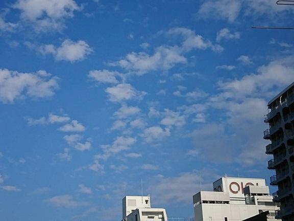 吉祥寺秋祭り2017の2.jpg